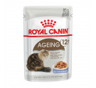 Royal Canin Wet Ageing +12 Jelly 85g