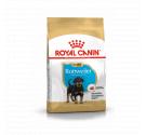 Royal Canin Rottweiler Junior 3kg
