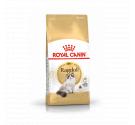 Royal Canin Ragdoll Adult 2kg