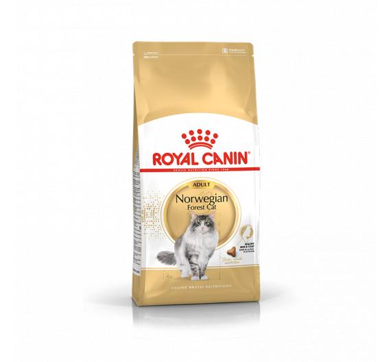Royal Canin Norwegian Adult 2kg