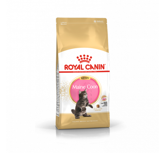 Royal Canin Kitten Mainecoon 2kg
