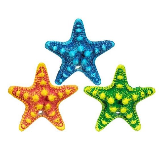Nobby Aqua Starfish Assortment 5