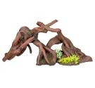 Nobby Aqua Wood with Plants