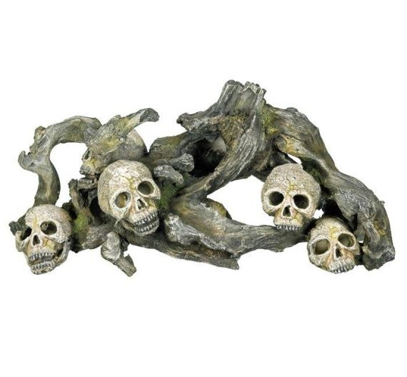 Nobby Aqua Wood with Skulls