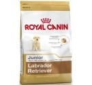 Royal Canin BHN Labrador Junior 3kg